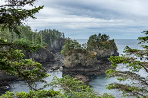 View of Neah Bay
