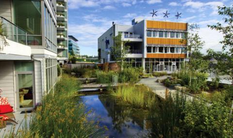 Dockside Green storm water treatment
