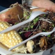 Traditonal Food Pitcook